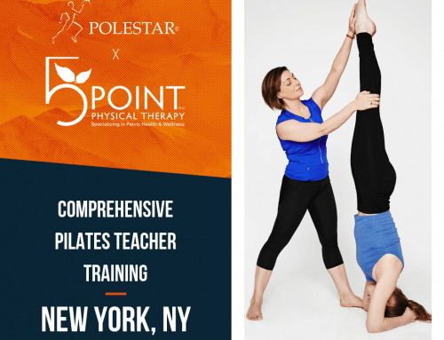 Polestar Pilates Teacher Training